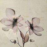 City Orchids Garden