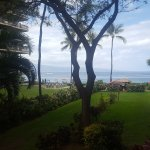 View from room 271 of Kaua'i wing.