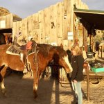 Photo de Broken Saddle Riding Company
