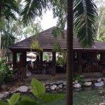 lagoon bar