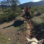 Foto di White Stallion Ranch