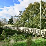 Bridge near Waihi