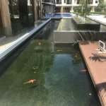 Inner Pool Area