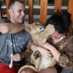 Playing with a lion cub!