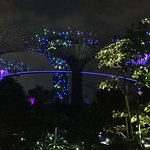 Gardens by the Bay Foto