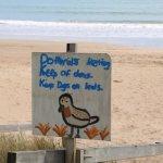 Taipa Beach 9