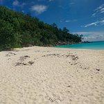 Vue de la plage (seconde partie)