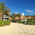 Photo of Coco Tulum