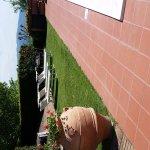 Foto de Domus Volumnia Residence