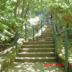 Photo of Cataract Gorge Reserve
