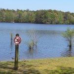 Main part: no swimming here