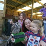 The falconry flying demonstrations are beyond compare. My two year old was smitten. Literally th