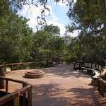 Monwana Game Lodge Image