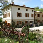 Foto de Bed and Breakfast Le Ginestre