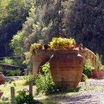Photo de Agriturismo Tre Madonne