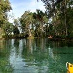 A Crystal River Kayak Company Foto