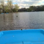 Pedalo view on the water!