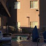 Foto de Homewood Suites by Hilton Phoenix Airport South