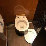 Disgusting. Every male toilet without a toilet seat. One left haphazard on the floor. Nice that