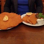 Schnitzel, bigger than a plate, and the fried emmentaler