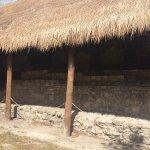 Photo of San Gervasio Mayan Archaeological Site
