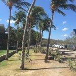 Foto di Flamingo Beach Resort & Spa