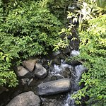 Buena Vista Lodge & Adventure Foto