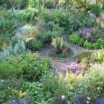 Moors Meadow Gardens & Nursery