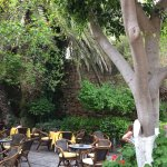 Socratous Garden