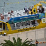 Yellow Catamarans Foto