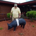 Photo op with the garden pig