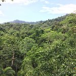 Photo of Daintree Discovery Centre