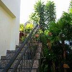 Foto de Arjuna's Guest House