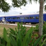 Foto de Seminole Gulf Railway Murder Mystery Dinner Train