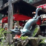 Fushimi Inari-Taisha Foto