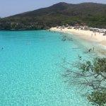 Photo of Kenepa Beach