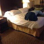 Photo de Holiday Inn Express Hotel & Suites Huntsville