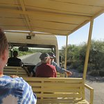 Sabino Canyon Tram Ride