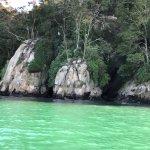 Marahau Water Taxis