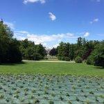 Long Stretch of Greens (Sempione Park)