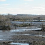 Nisqually National Wildlife Refuge – Walking Trail