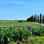 Agriturismo Il Rigo-billede