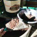 Sookjai Organic Farm Tour