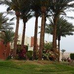 Foto di SUNRISE Select Royal Makadi Resort