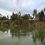 Photo de Parc naturel de l'Albufera