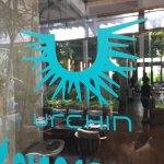 Photo of Urchin Bali