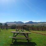View from Beer Garden