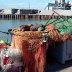Photo of Whitstable Harbour