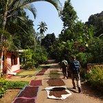 Photo of Polwaththa Eco Lodges