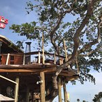 Such a great atmosphere! My husband and I loved the tree bar which we really recommend, and the